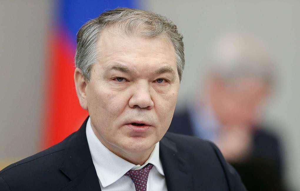 Профильный комитет Госдумы рекомендовал принять заявление о непризнании выборов на Украине