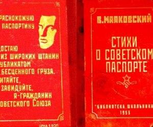 Упрощенная паспортизация для Донбасса: масло в огонь или итог давно начатого процесса